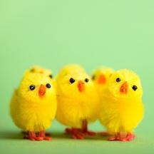 Kam na výlet na Velikonoce? Velikonoční akce 2015 po celé České republice