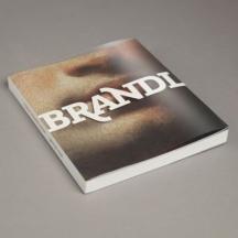 Národní galerie v Praze vydává knihu o malíři Petru Brandlovi