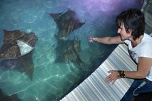 Zlínská zoo otevírá novou expozici Zátoka rejnoků