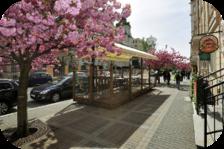 Staroslovanská restaurace v Karlových Varech - Gastronomický požitek našich předků