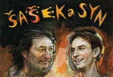Šašek a syn - Divadlo Bolka Polívky