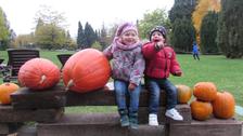 Podzim v trojské botanické zahradě rozzáří hravost a barvy dýní