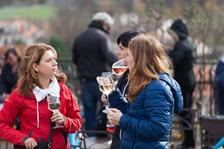 Vína ročníku 2017 ochutnáte poprvé už za měsíc. Svatomartinský přípitek na vinici sv. Kláry tentokrát potěší i milovníky hudby