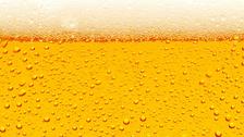 Břeclavský pivní košt