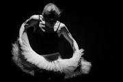 Andrea Miltnerová pro Spectaculare 2018 - Divadlo Alfred ve dvoře