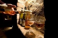 58. výstava vín Velké Němčice - Velké Němčice