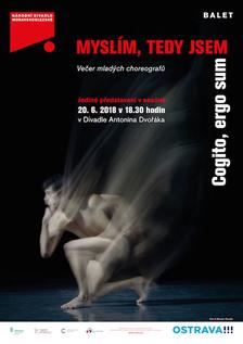 MYSLÍM, TEDY JSEM - Divadlo Antonína Dvořáka