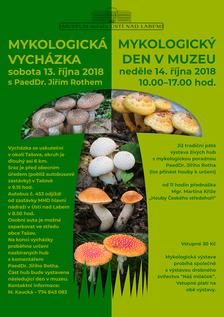 Mykologická vycházka v Tašově