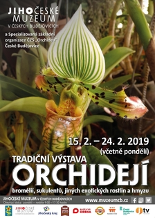 Tradiční výstava orchidejí, bromélií, sukulentů, jiných exotických rostlin a hmyzu