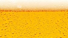 Mezinárodní pivní festival 2019 - Výstaviště České Budějovice