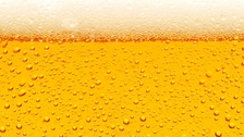 Pivní a vinné slavnosti 2019 - Výstaviště Lysá nad Labem