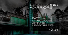 Electronic Warriors