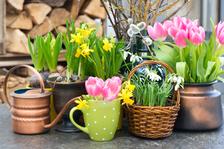 FOR DECOR & HOME 2020: Poznejte trendy jara, svátku zamilovaných i Velikonoc
