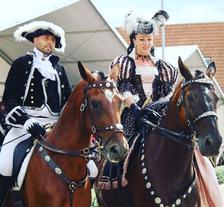 FOR HORSE SHOW: Nevšední podívaná pro všechny milovníky koní